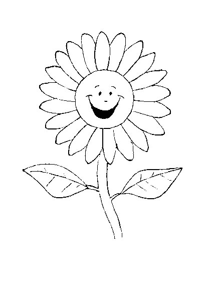 Sablony Kvetiny Domaci Napady